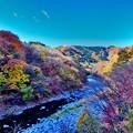 Photos: 河岸の紅葉
