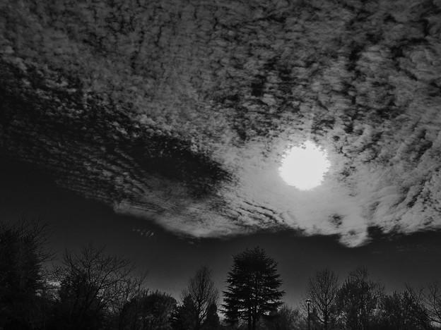 太陽と鱗雲