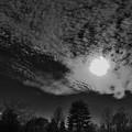 Photos: 太陽と鱗雲