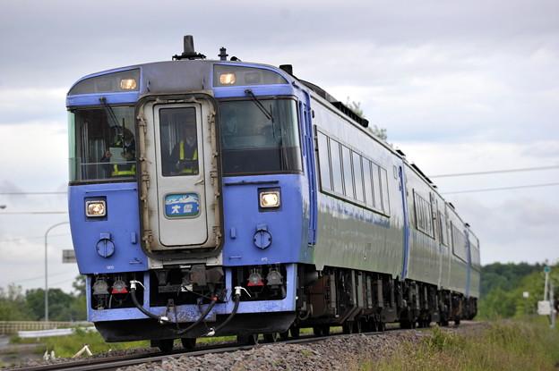 特急 大雪 183系 石北本線 桜岡~東旭川