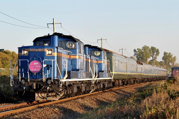 DD51-1083 トワイライトエクスプレス 室蘭本線