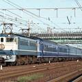 Photos: EF65-1106 寝台特急「さくら」 EF65代走