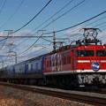 Photos: EF81-95 寝台特急 北斗星 東北本線 ヒガハス
