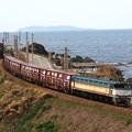 Photos: EF81-455 羽越本線 吹浦~女鹿