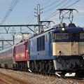 Photos: EF64-1051+EF81-133 E26 カシオペア 上越線 井野~新前橋  2019.9