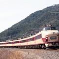 Photos: 485系ボンネット 特急「加越」 北陸本線 敦賀-新疋田