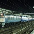 EF64-17 急行ちくま 増結  名古屋駅   JR貨物受持ち