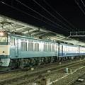 Photos: EF64-65 急行ちくま  名古屋駅   JR貨物受持ち