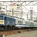 Photos: EF58-157 ユーロライナー 東海道本線 共和ー大高