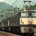 Photos: EF63-3 スーパーエクスプレスレインボー 碓氷峠 信越本線 軽井沢~横川
