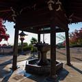 写真: 釈迦堂 手水舎