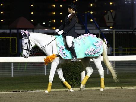 川崎競馬の誘導馬04月開催 桜Verその2-120409-18