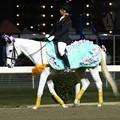 写真: 川崎競馬の誘導馬04月開催 桜Verその2-120409-18-large