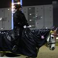 写真: 川崎競馬の誘導馬04月開催 桜Verその3-120409-01-large