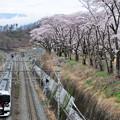 Photos: E257系 特急かいじ号
