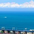 相模湾を見ながら鉄橋を渡る東海道線185系特急踊り子号