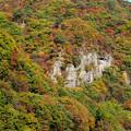 写真: 岩島~川原湯温泉(旧線)