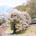 八ヶ岳と桜と211系電車