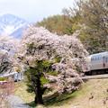八ヶ岳と桜とホリデー快速ビューやまなし号