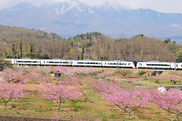 八ヶ岳と桃の花咲く新府桃源郷を行くE353系特急スーパーあずさ号