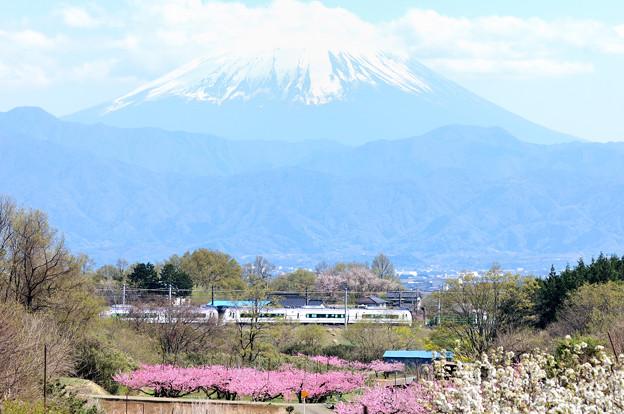 富士山と桃の花とE353系特急スーパーあずさ号