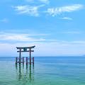 写真: 琵琶湖と湖上鳥居