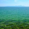写真: 琵琶湖