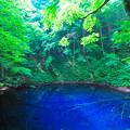 Photos: 神秘の世界(青池)