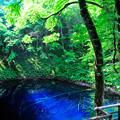 Photos: 青池