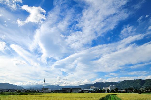 刻々と形を変える雲