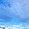 写真: 荒川橋梁サイドビュー