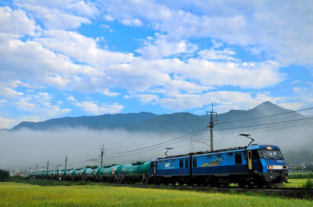 早朝の篠ノ井線を行く貨物列車