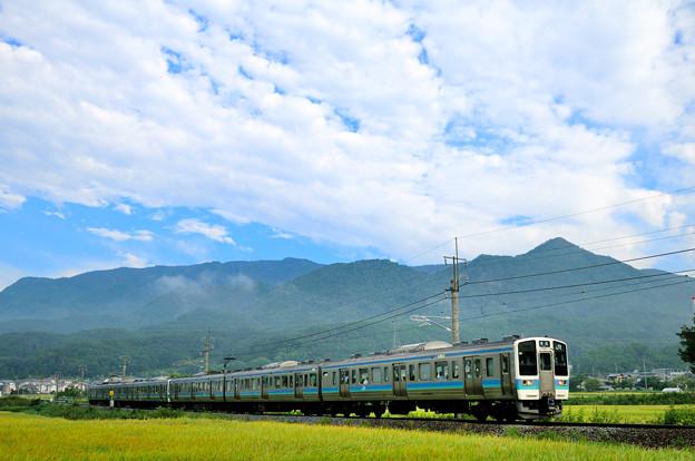 聖高原を行く211系普通電車