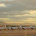 Photos: チュニス・カルタゴ空港