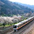 Photos: E233系中央特快大月行き