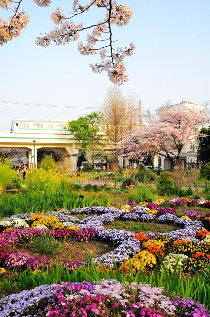 春色に輝く東京メトロ千代田線
