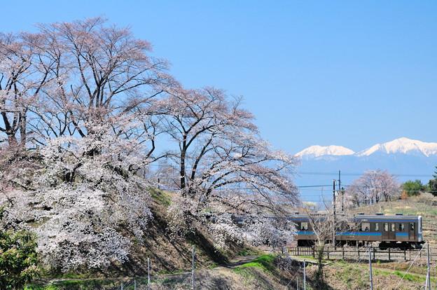 勝沼甚六桜と南アルプスと211系普通電車