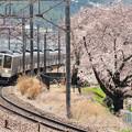 勝沼甚六桜と211系普通電車