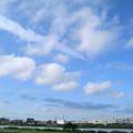 Photos: 荒川上空の雲