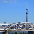 Photos: 東京スカイツリーと荒川橋梁を渡る京成スカイライナー