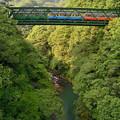 Photos: 鉄橋渡る3色電車