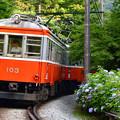 ザ 登山電車
