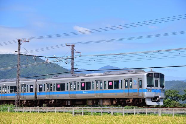 1000形 急行電車
