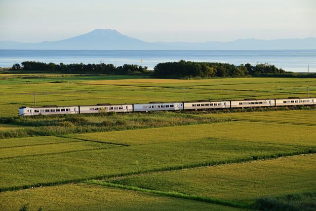 駒ヶ岳と噴火湾を望む田園を行く特急列車