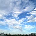 Photos: 荒川にかかる雲たち