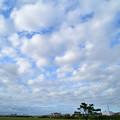 Photos: 青空の隙間