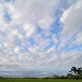 空が広く見える場所