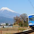 Photos: 冬晴れ