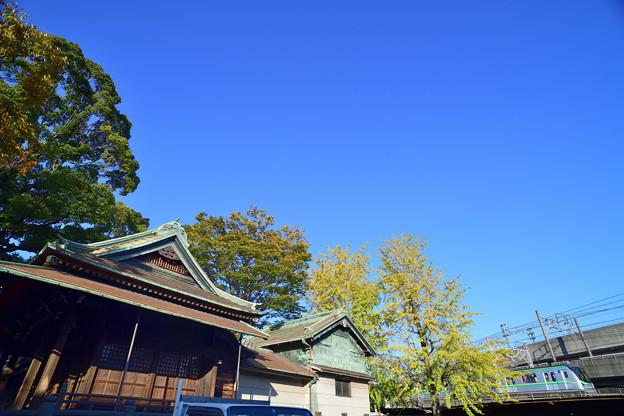 Photos: DSC_4223_00001