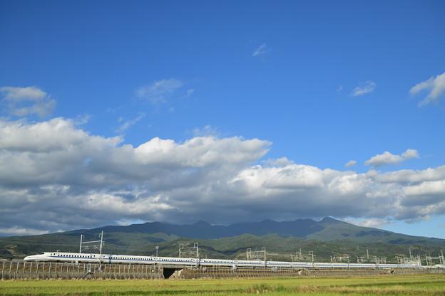 愛鷹山と16両全景